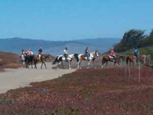Mendocino Coast Trail Ride